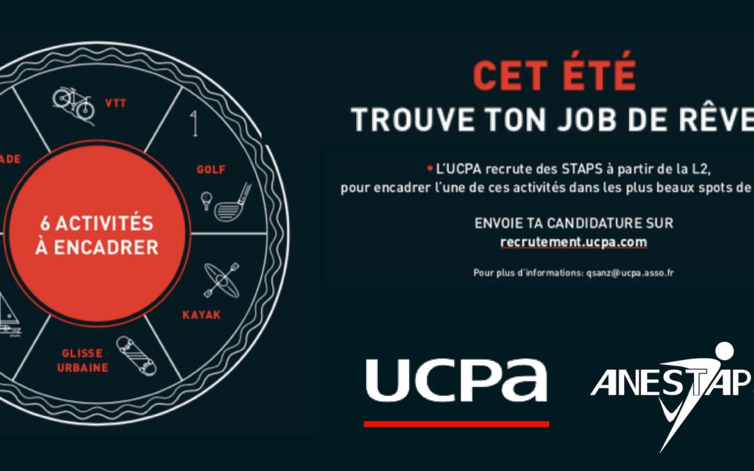 Cet été, trouve ton job de rêve !